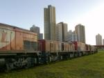 Curitiba Yard