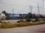 CR 6186