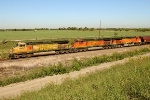 BNSF 4437, 4439, and 4613