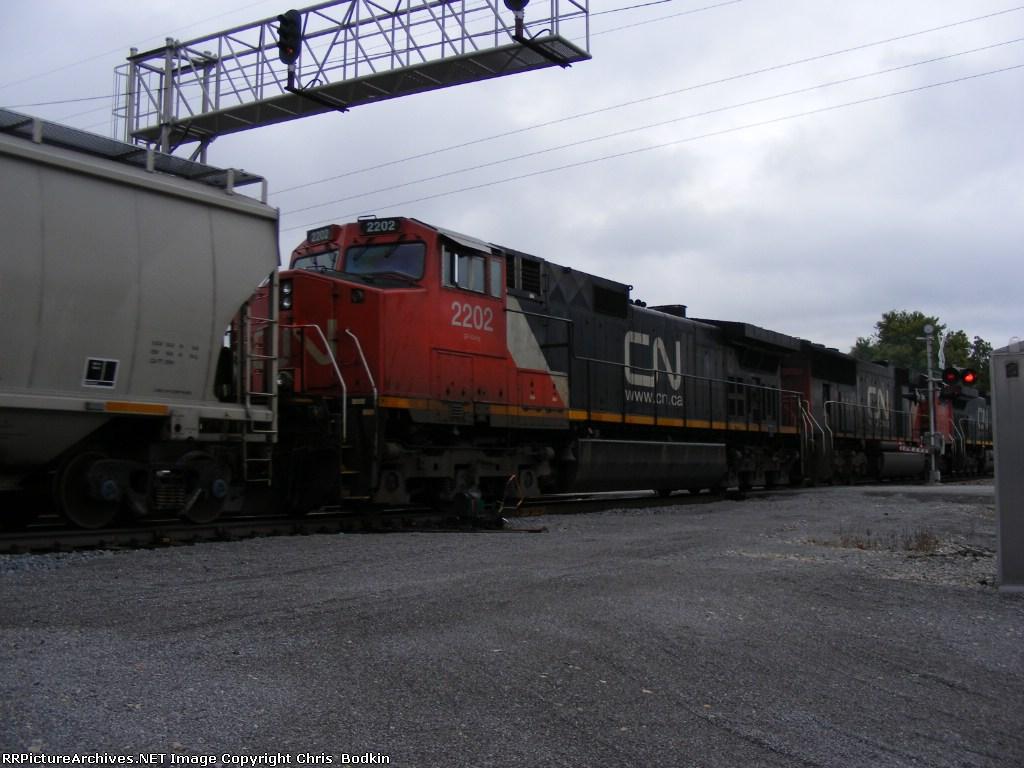CN 2202