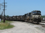 310 makes its set out in the yard