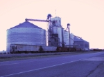 Covered hoppers at Terral grain elevator