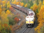 The Royal Canadian Pacific Passing some beautiful falls colours as he approaches Selim