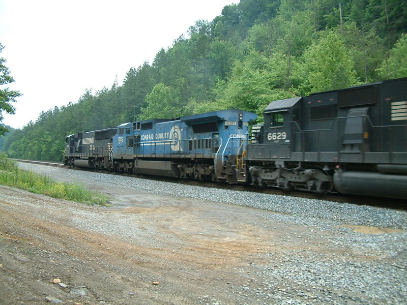 NS 8381 and 6629