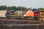 CN 2193 Westbound