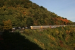 Westbound NS empty autorack train climbing Horse Shoe Curve