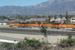 A string of BNSF engines sitting