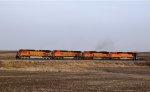 BNSF 5343
