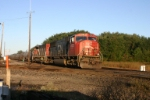 CN 5722 leads sulpher loads east