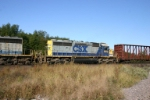 CSX 8012 is a Bone Valley vet