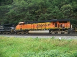 Burlington Northern Santa Fe 7799 at Horseshoe Curve