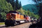BNSF Scenic Sub Stevens Pass