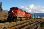 CP 8531, CP 9580, CITX 3060,CEFX 3128,CEFX 3145,VITX 2010