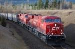 CP 8898