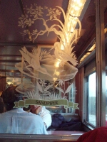 etched glass designs in the dining car