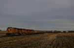 BNSF/WIR Grain Train