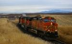 BNSF/WIR Grain Train