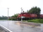 CP 9775 IN THE RAIN