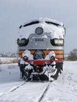 Snowy SP.