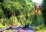 """CSX 2761 C964-08 """"Cutting Through the Jungle"""""""