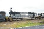 NS 2509 at Tulp