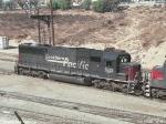 SP 5513