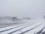 Wyoming Yard in the Fog
