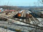 BNSF Autorack Train