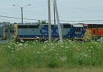 CSX 6057 and weeds