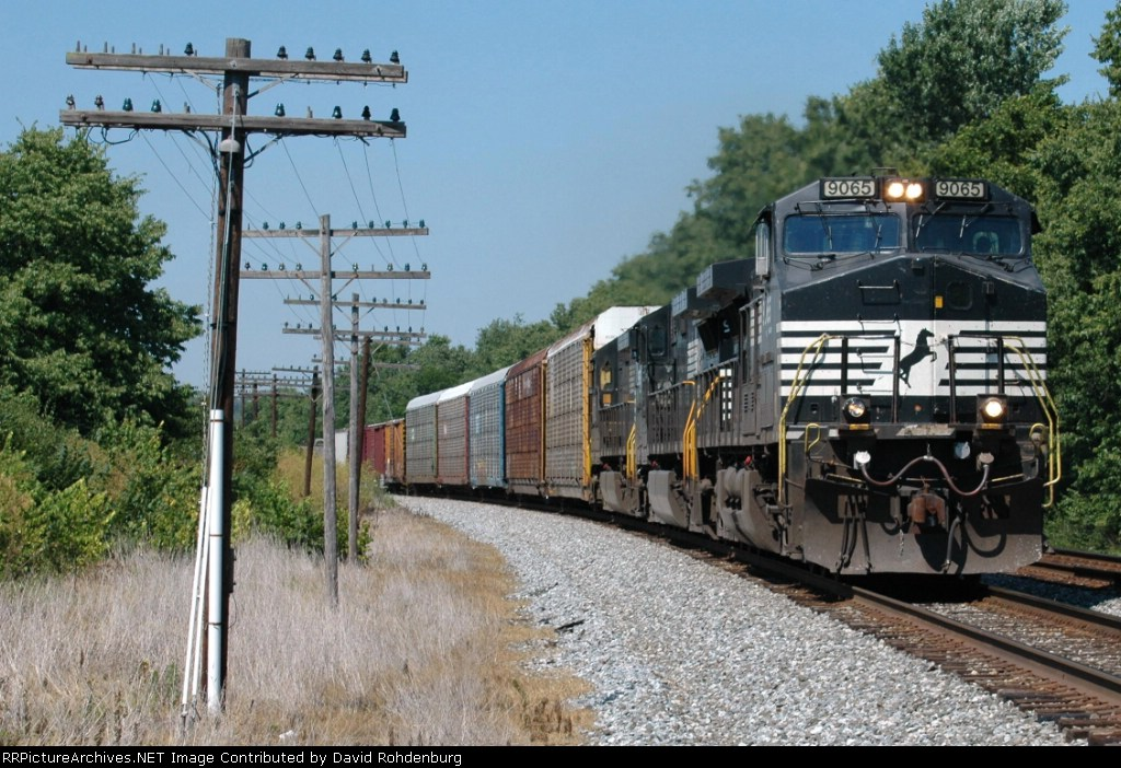 NS 9065 leads