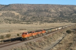 Westbound coal near Grants NM