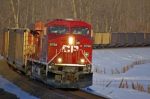 CP 8768 East