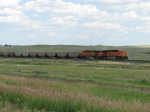 BNSF 5895 leads coal empties west