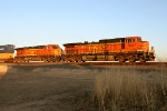 BNSF 5337 and BNSF 7655