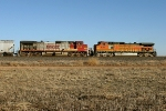 BNSF 746 and BNSF 4567