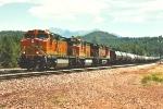 Westbound unit ethanol train
