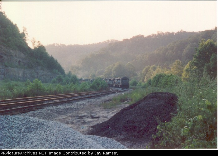 CSX train entering Sapphire Plant siding