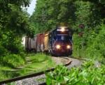 Pan AM Train ED495