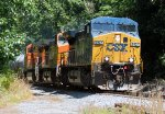 Train POSE With BNSF and CSX Power