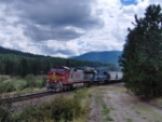 Another EB Warbonnet