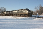 NS 118 passing the T&S gang's snowman