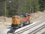 BNSF 8903 & 9266