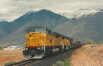 Union Pacific's Roseville,CA-Alton Southern Manifest Springville,Utah April 20,1997.