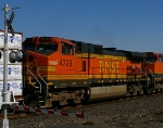 BNSF 4723-Cover Girl