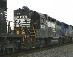 NS 5003