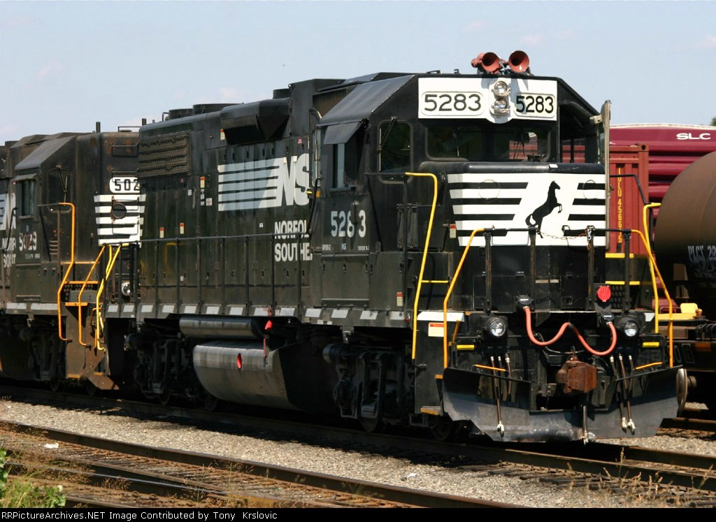 NS 5283 Red Horns
