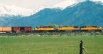 UNION PACIFIC'S SALT LAKE CITY-MILFORD,UTAH MANIFEST.