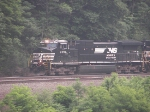 NS 9894