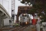 NJT 4219 crossing SHARK