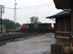 CN 8813